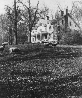 Joseph Lloyd Manor in 1910